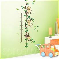 Samolepka na stenu - Metríkové opičky