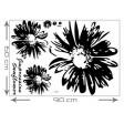 3D tapeta - Čierna slnečnica